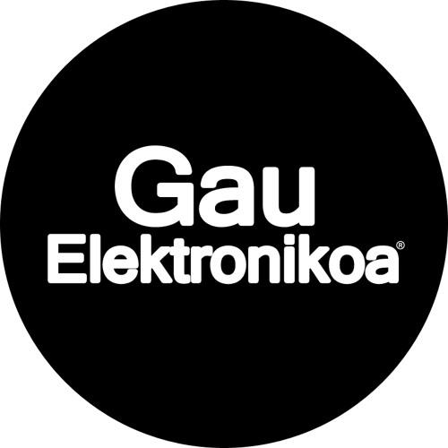 Gau Elektronikoa's avatar