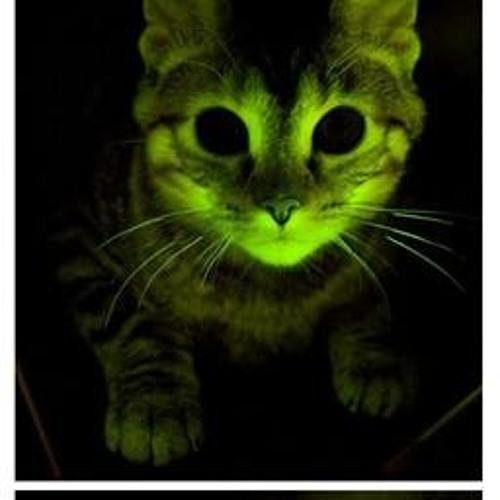 Smitten Kittyn's avatar