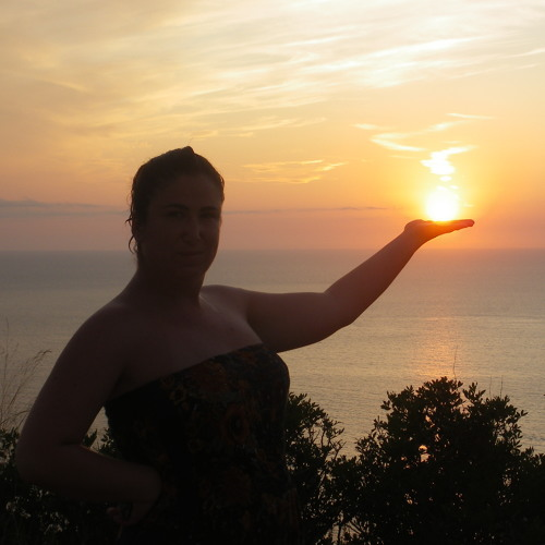 Silvia Meneses's avatar