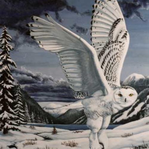 Owl'sDance's avatar