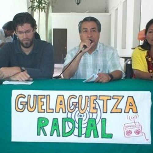 Guelaguetza Radial's avatar