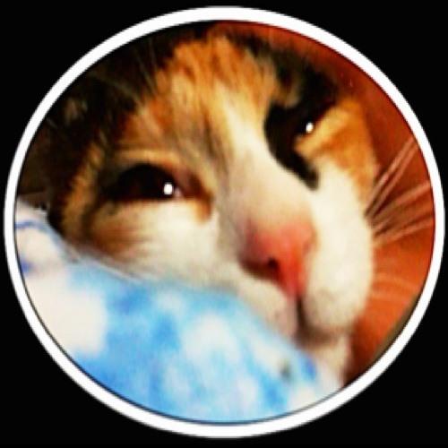 ocp●co's avatar