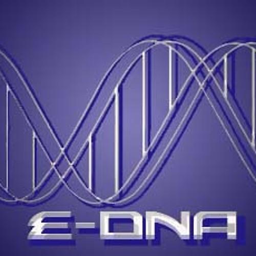 eDNA's avatar
