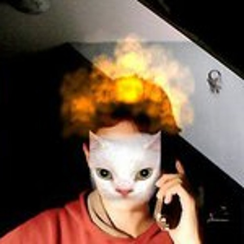 Malcolm MacDougall's avatar