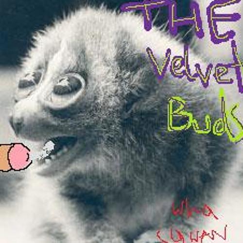 The Velvet Buds's avatar