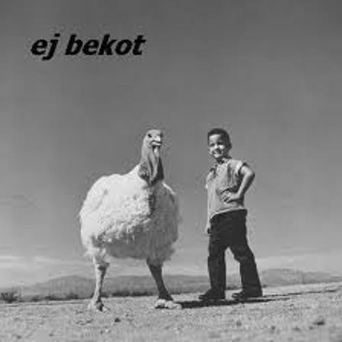 ej bekot's avatar