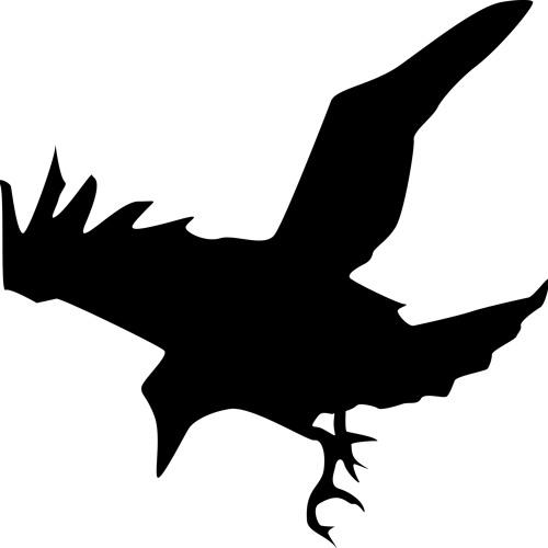 DJRAV'N's avatar