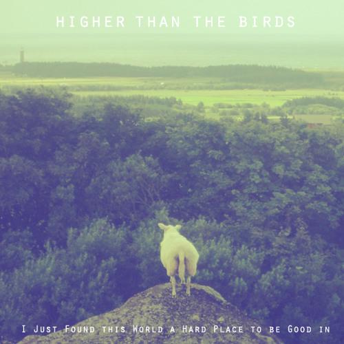 Higher Than the Birds's avatar