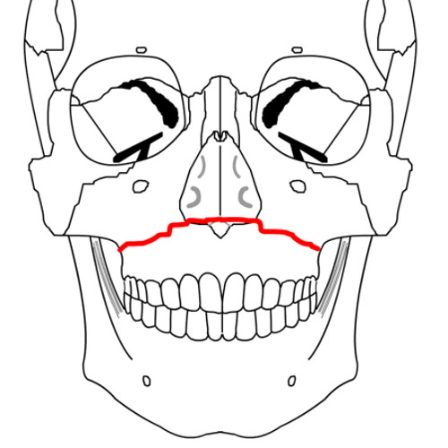 woodenkp's avatar
