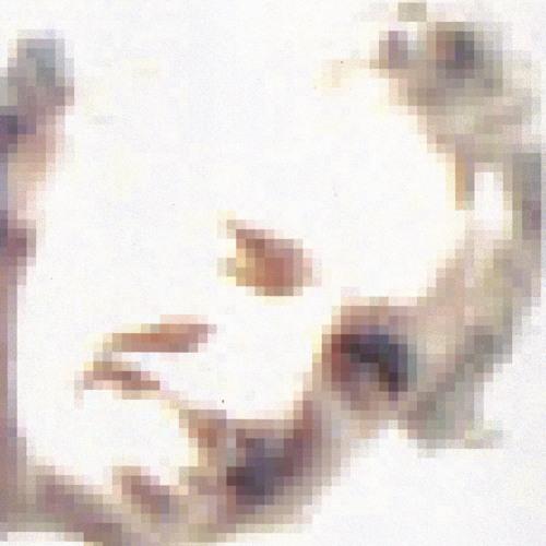 00polo's avatar