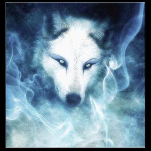SUB WOLF's avatar