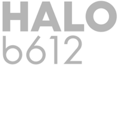 HALO b612's avatar