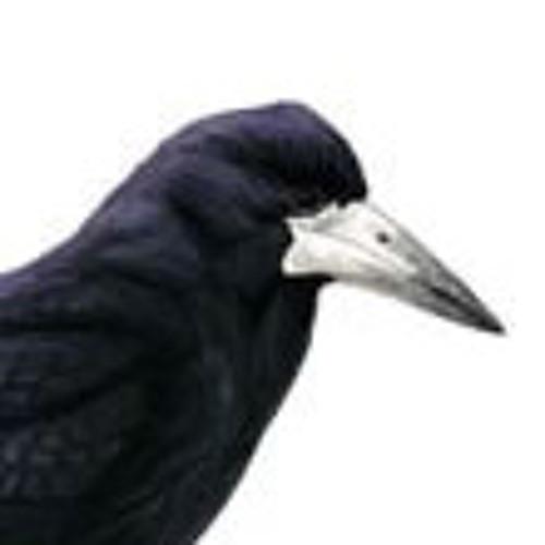 Rook_The_Legend's avatar