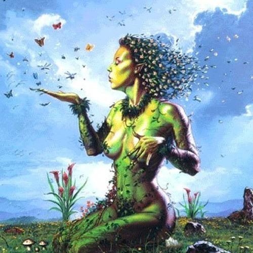 Rora Meadow's avatar