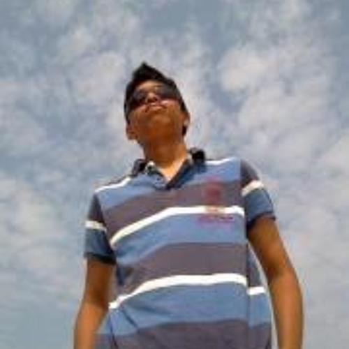 Pranitchandra Baghyanagar's avatar