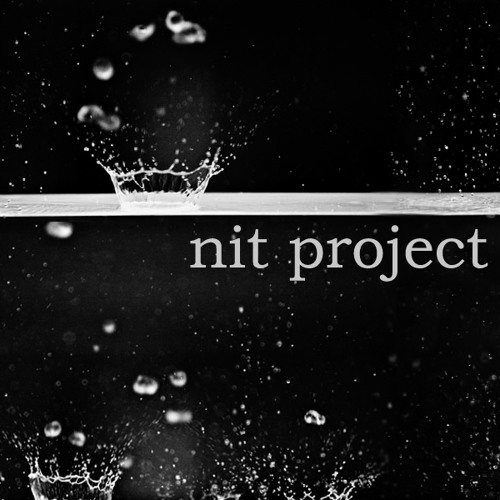 nit project's avatar