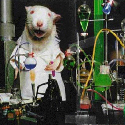Lab Rats's avatar
