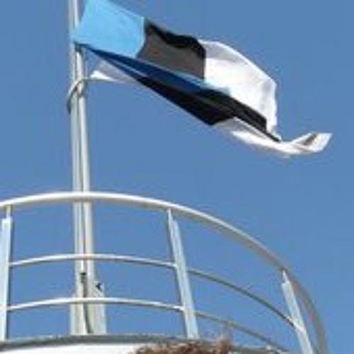 priitlahemaa's avatar