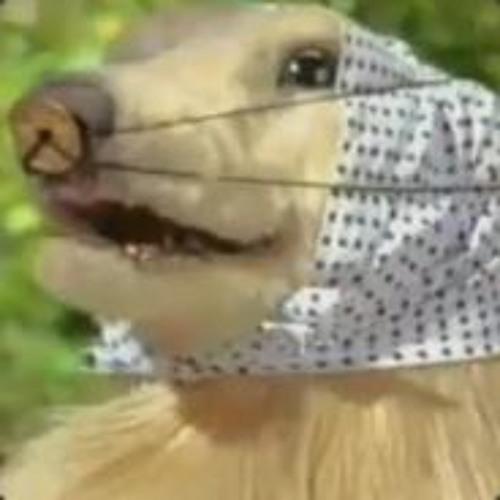 LeoAstudillo's avatar