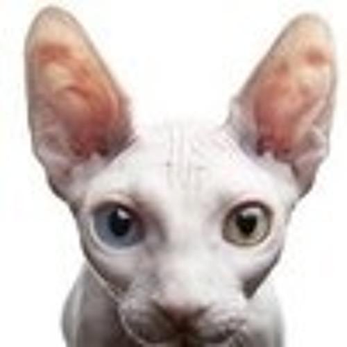 Nick N's avatar