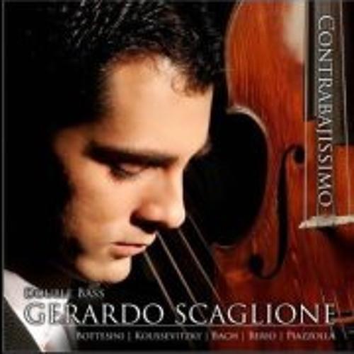 Gerardo Scaglione's avatar