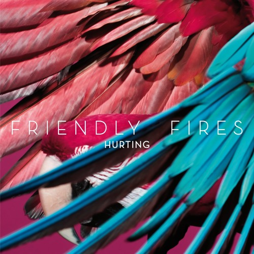 Friendly Fires Mexico's avatar