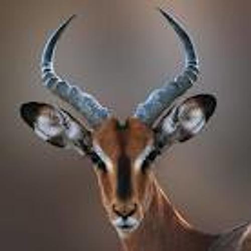 Impalah's avatar