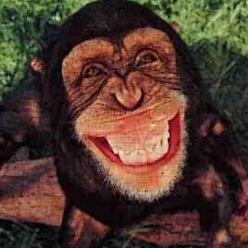 Alex Petru's avatar