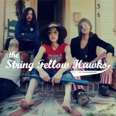 StringFellowHawks