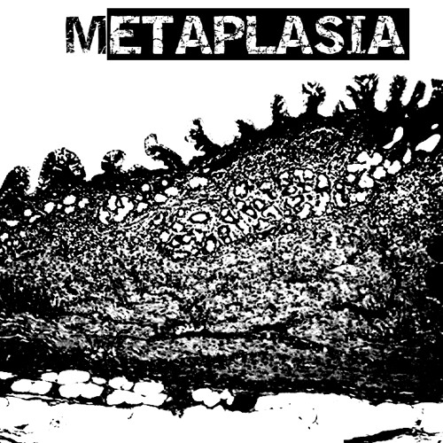 Metaplasia's avatar