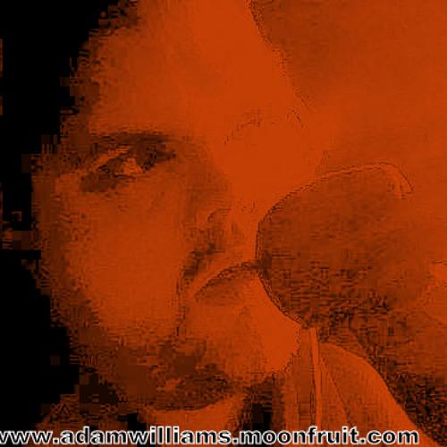 DJAdamWilliams's avatar