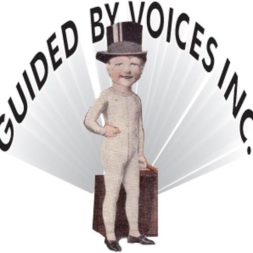 GBV Inc's avatar