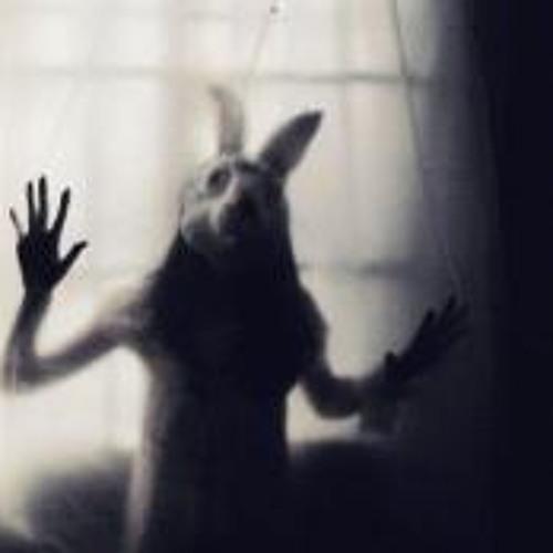 Cristina M Cas's avatar