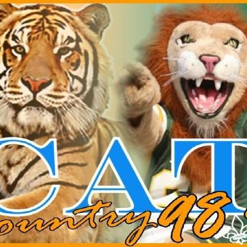 catcountry989's avatar