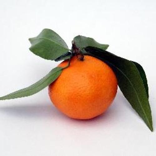 Tangerine d'Or's avatar