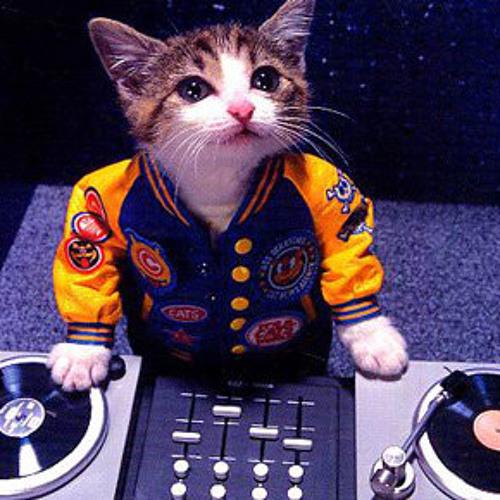 DJ Polako's avatar