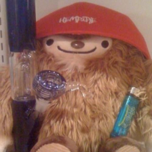 CamAlto's avatar