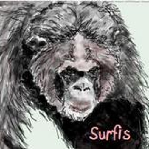 thesurfis's avatar