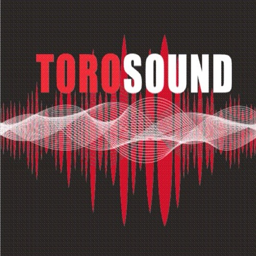 TOROSOUND's avatar