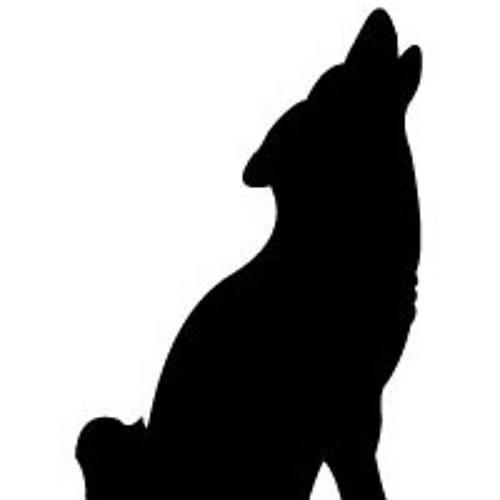 rudolfneuzer's avatar