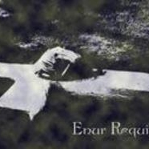 enur requiem's avatar
