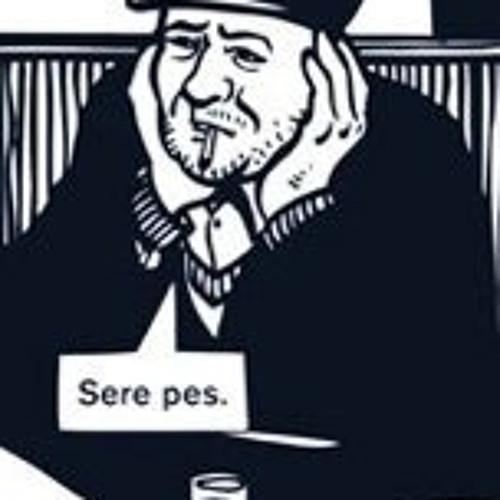 Tomáš Dvořák's avatar