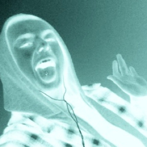 wildez's avatar