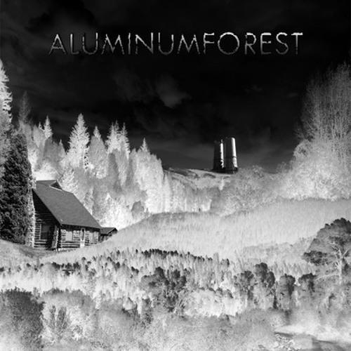 Aluminum Forest's avatar