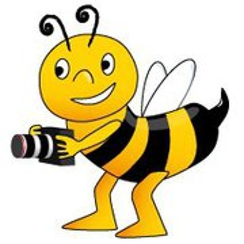 Andreas Bee's avatar