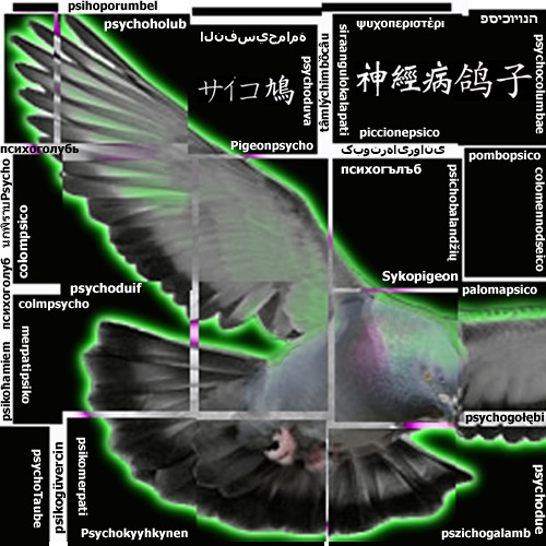sykopigeon's avatar