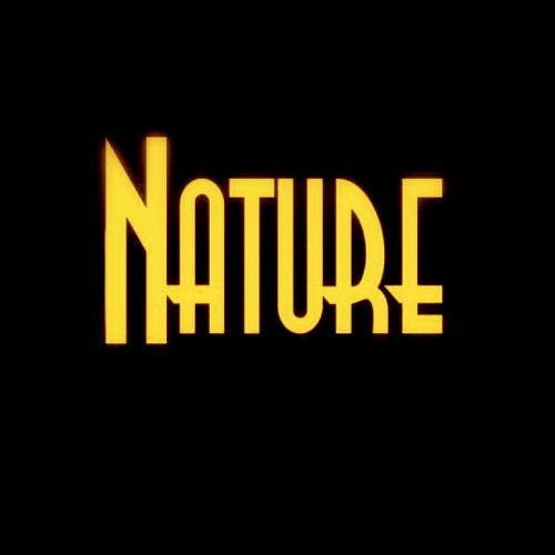 producernature's avatar