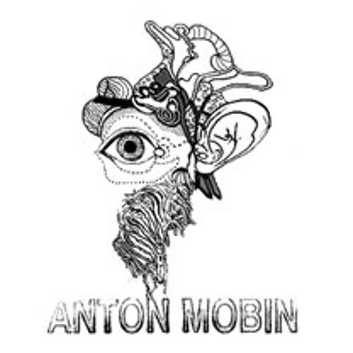 ANTON MOBIN - COLLISION's avatar