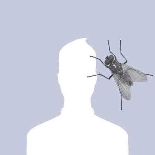 micromattic's avatar