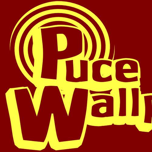 PuceWallpaper's avatar